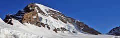 Mönch 4107 m  vom Gletscher aus