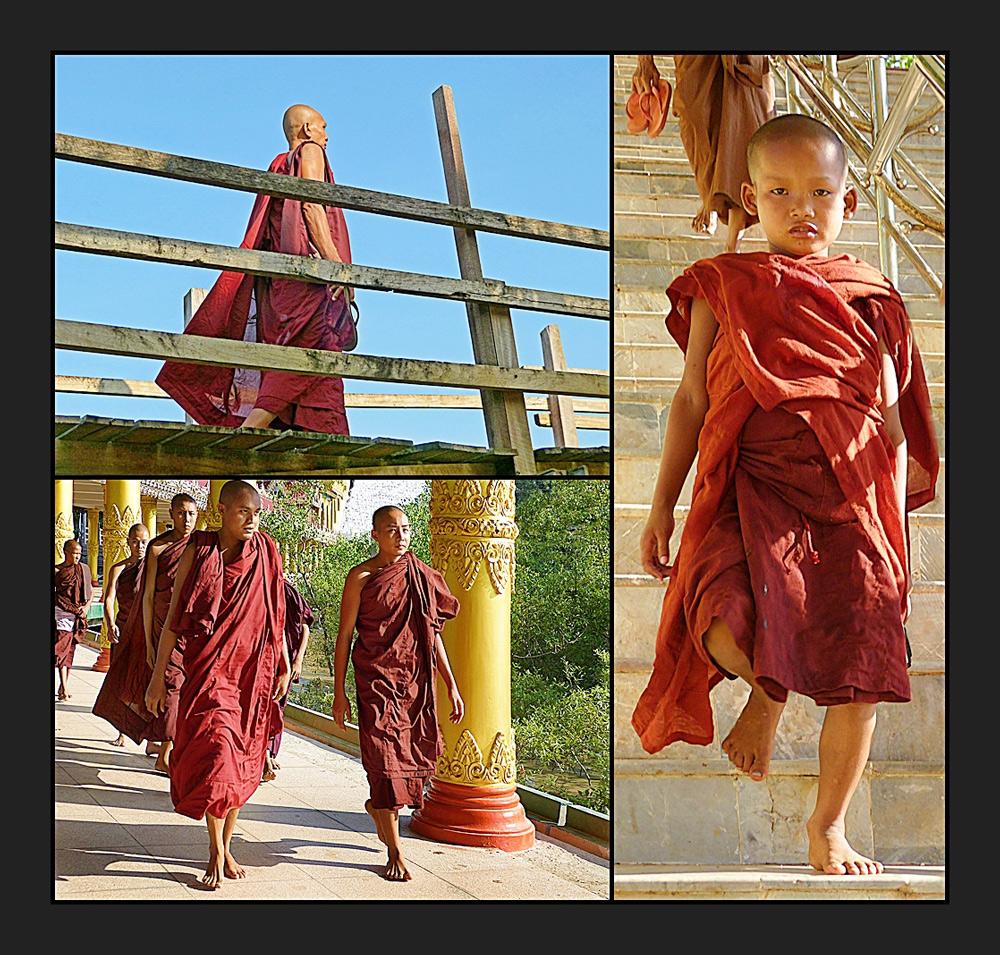 Mönche und Novizen