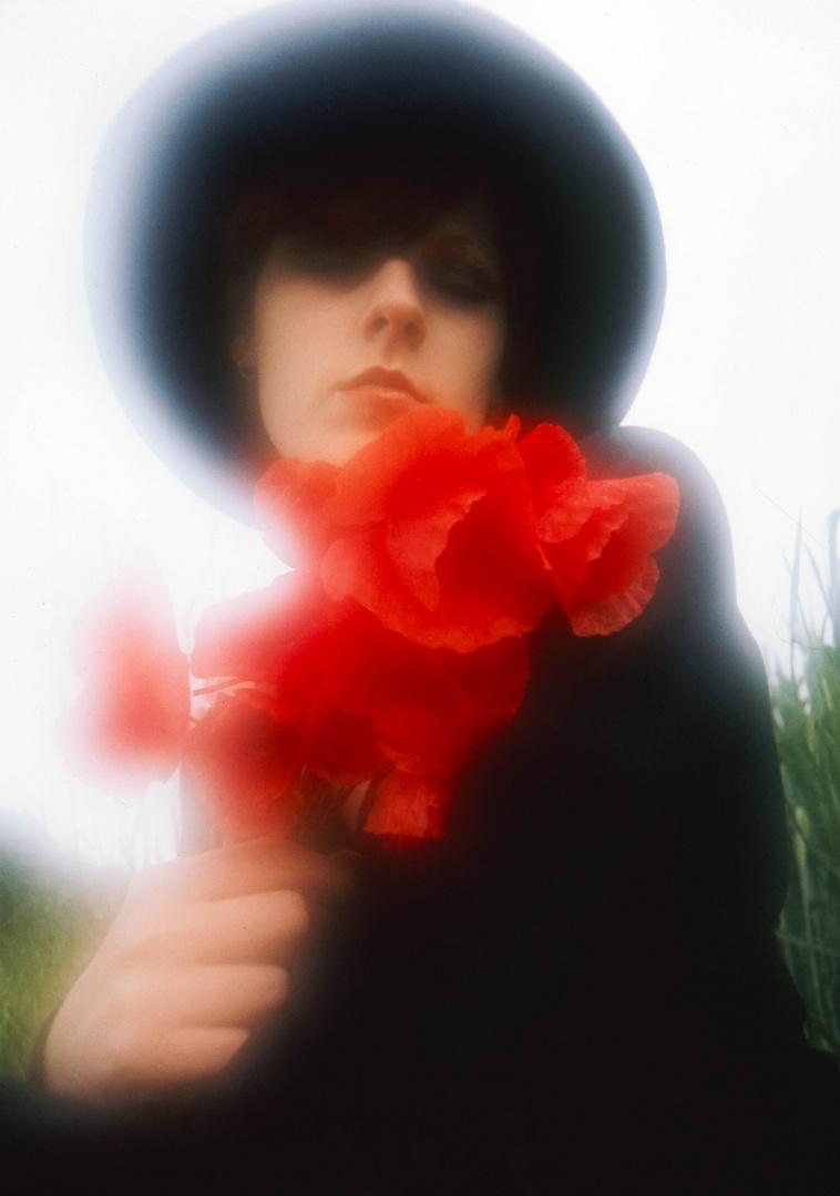 mohnblüten foto  bild  youth sommer outdoor bilder auf
