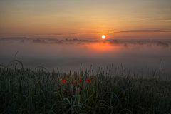 Mo(h)ntag im Nebel
