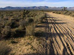Mojave Road 8756