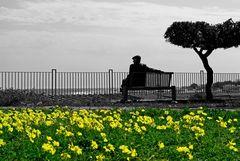 Momenti di serenità