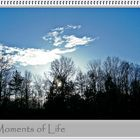 Moments of Life ...