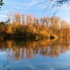 mon petit lac en automne!!