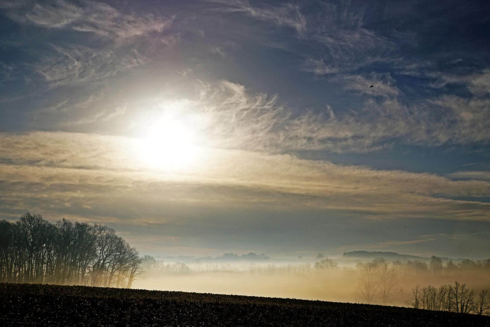 Mon soleil dans la brume de ce matin....