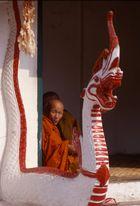 monaci al tempio