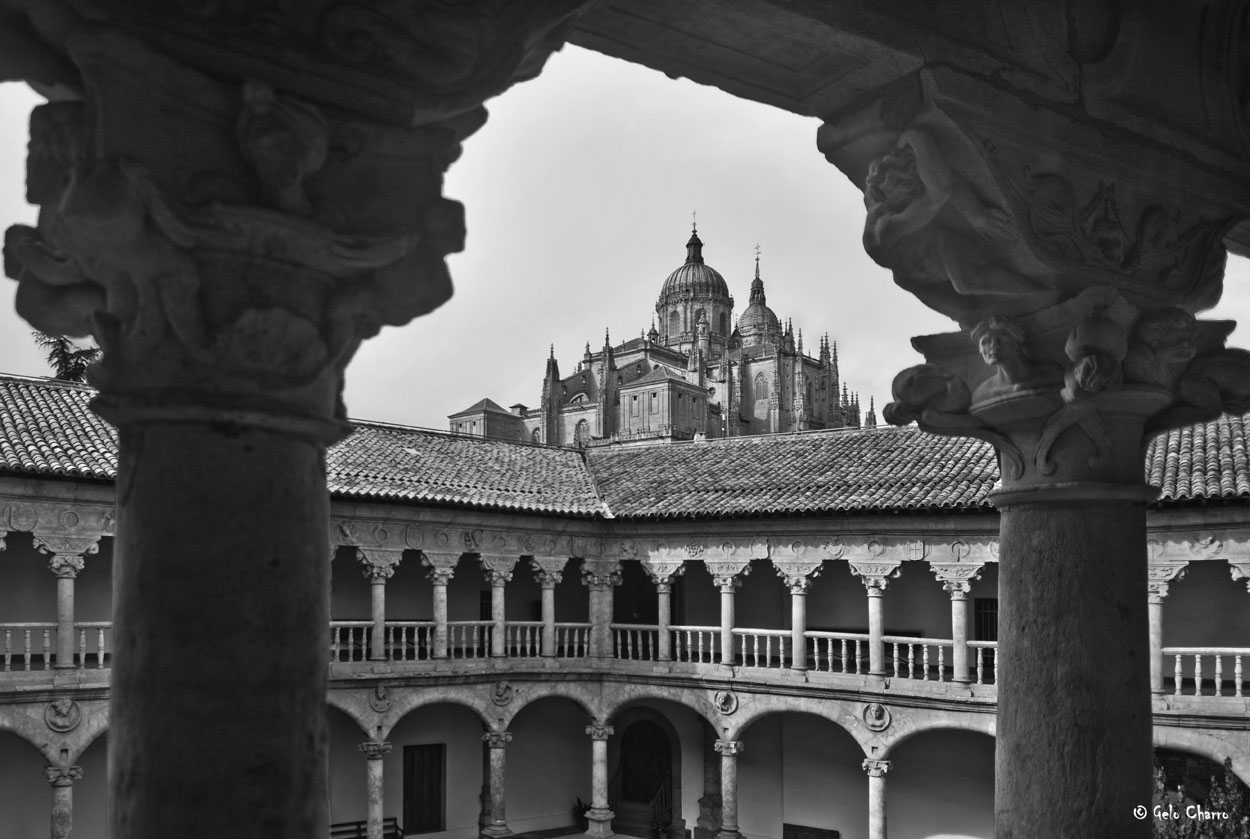 Monasterio de Las Dueñas y Catedral de Salamanca