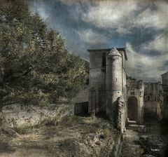Monasterio San Pedro de Arlanza. (Burgos)