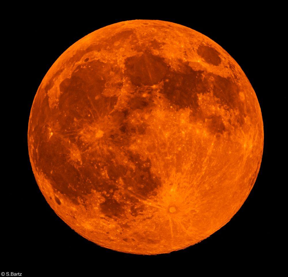 Mond  26.04.2021 (1)