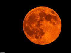 Mond 26.04.2021  (3)