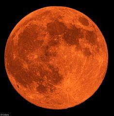 Mond 27.04.2021 (1)