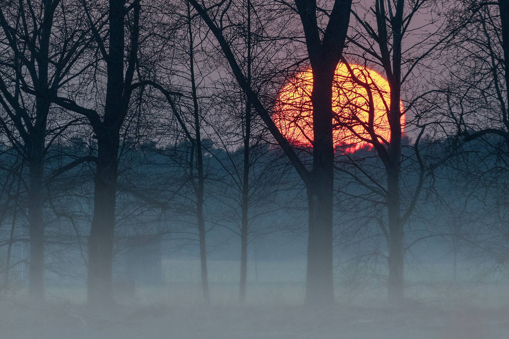 Mond am Morgen