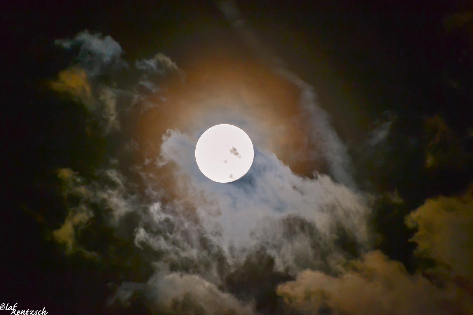 Mond August 2014