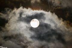 Mond August 2014 III