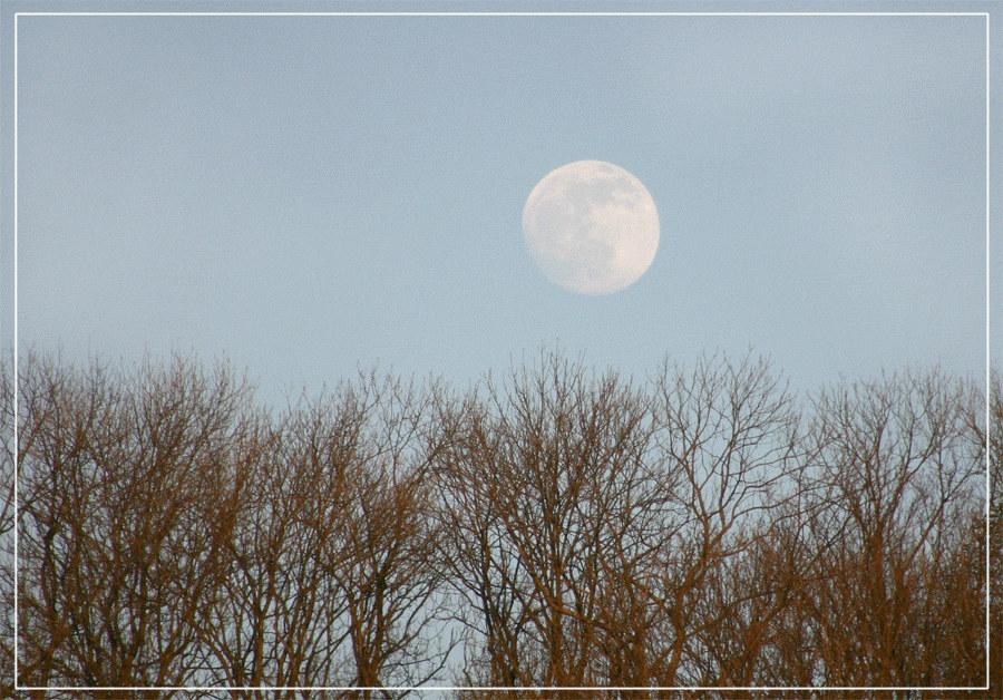 Mond bei Tag ....
