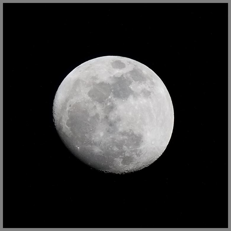 Mond im Portrait