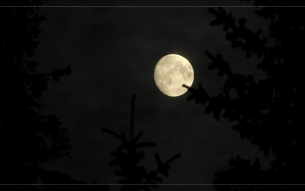 Mond in Lappland