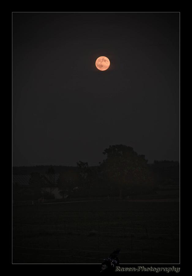 Mond Mond Mond ...