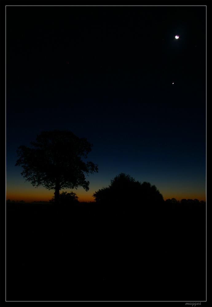 Mond vor Sonnenaufgang
