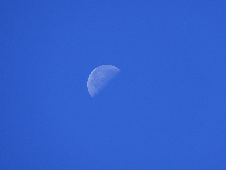 Mond zu Mittag