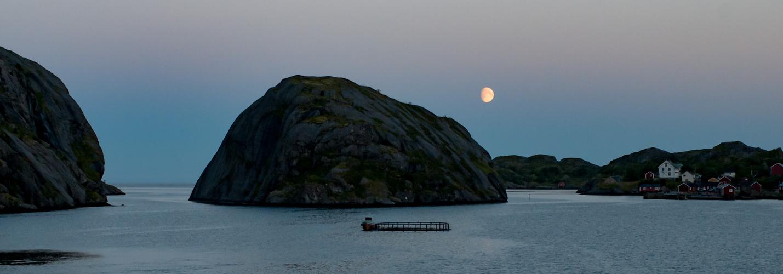 Mondaufgang am Nußfjord, Lofoten