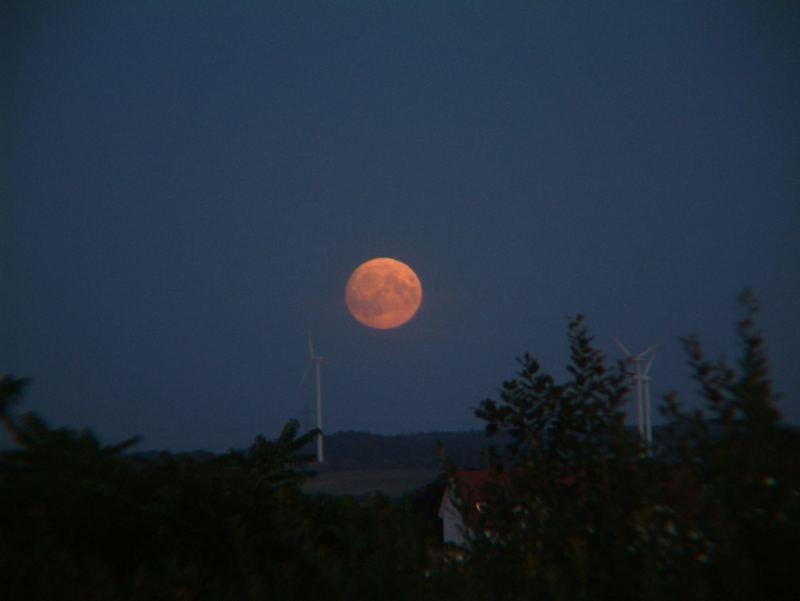 Mondaufgang im Sommer