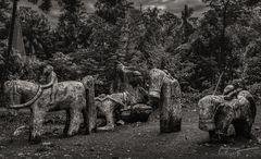 Monden ~ Sumbanese Totem, Sumba Barat, Indonesia