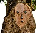 Mondmann-Baum