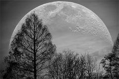 Mondnacht ....