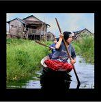 Mondo Thai: Vita sui canali