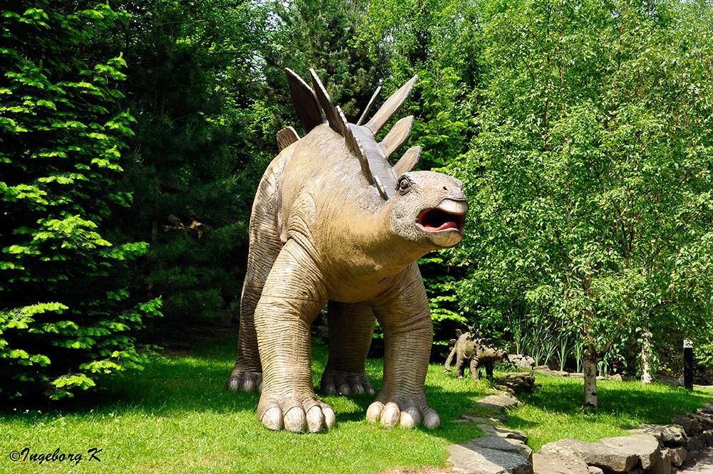 Mondo Verde - Dinosaurier - 3