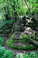 Mondo Verde - geheimnisvoll im Wald verborgen - Neptun