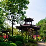 Mondo Verde - im chinesischen Garten