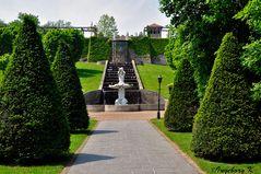 Mondo Verde - Italienischer Garten - Rom Trevi-Brunnen