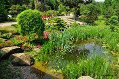 Mondo Verde - japanischer Garten