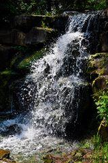 Mondo Verde - Wasserfall