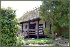 Mondo-Verde - Zen-Haus im japansichen Garten