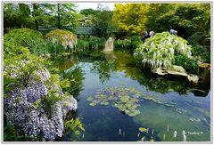 Mondoverde - Teichidylle im chinesischen Garten