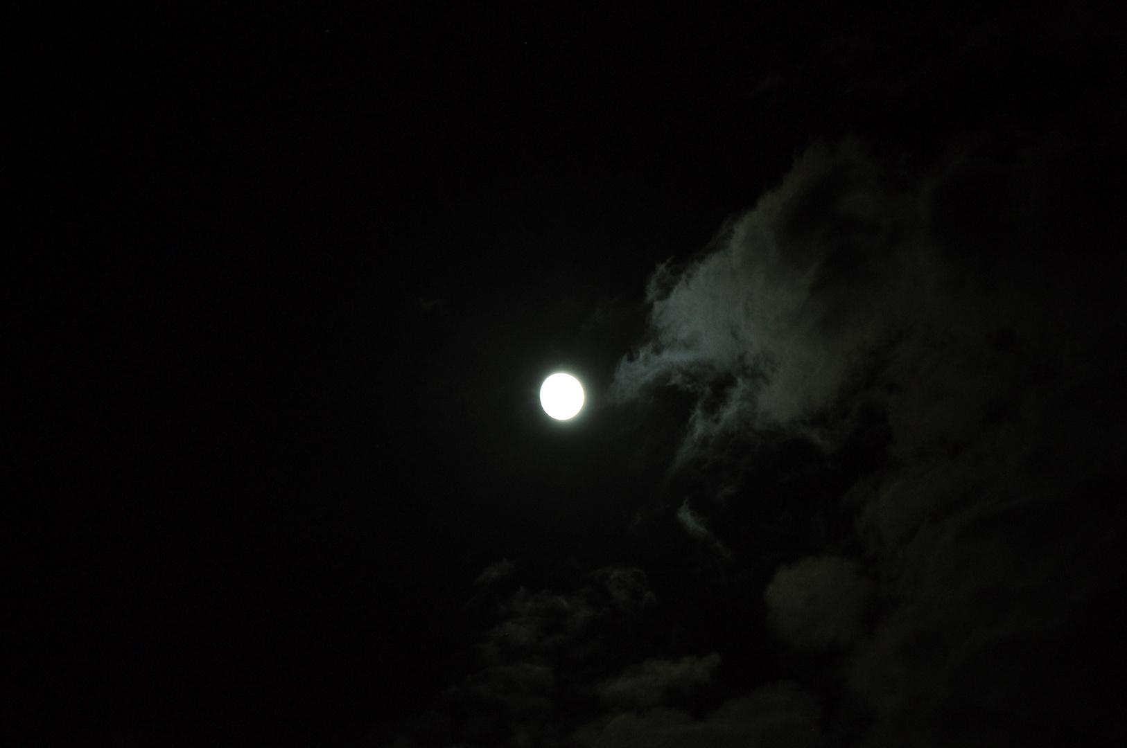 Mondpicker 2