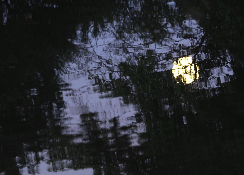 mondspiegelung im teich