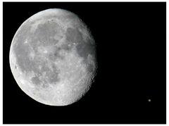 Mond(t)age