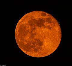 Mondzeit (3)