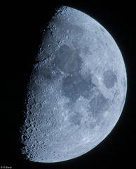 Mondzeit  (5)
