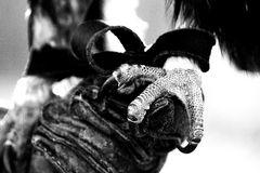 * mongolischer steinadler *
