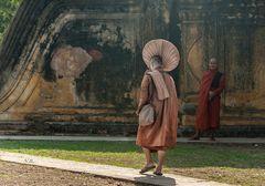 Monjes Budistas.