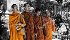 monks of bangkok