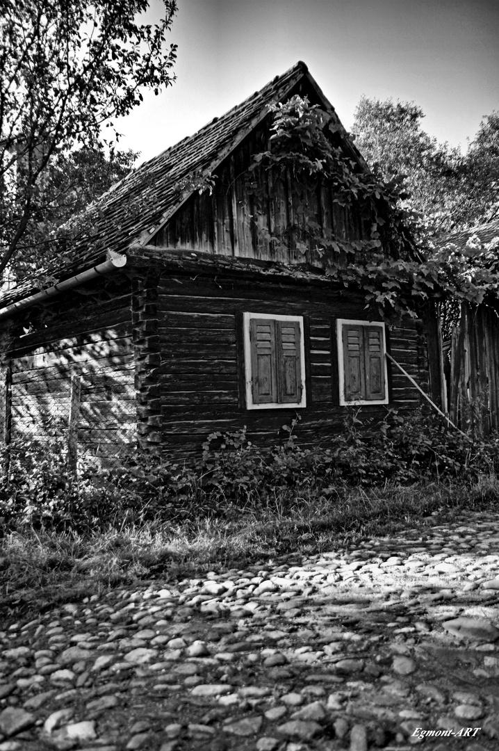 Monochrome Details of Transylvania