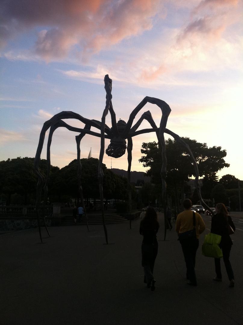 Monsterspinne am Zürichsee