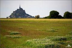 Mont St Michel II