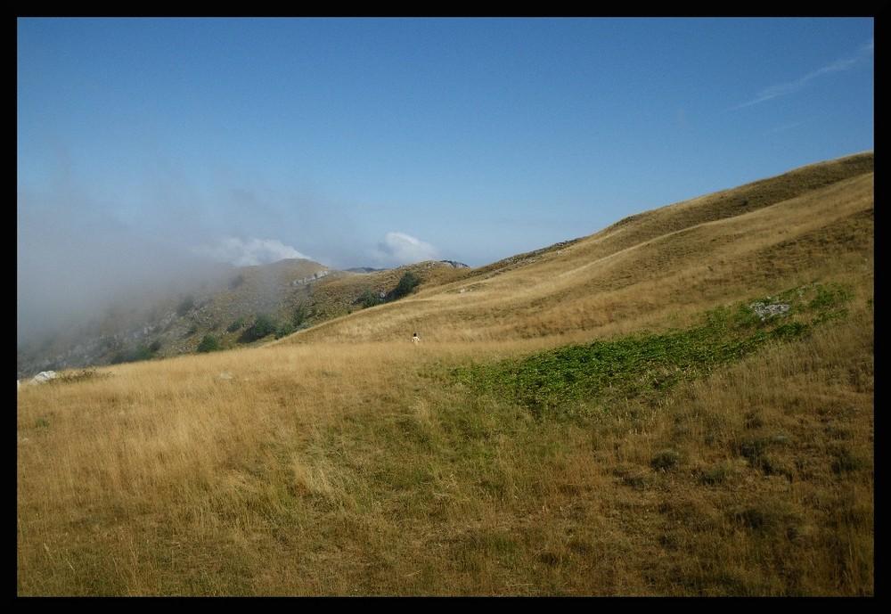 Montagne de Couspeau #5